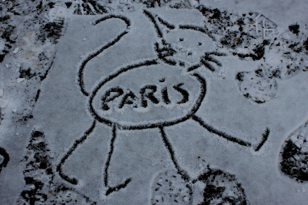 A Parisian cat drawn in the snow