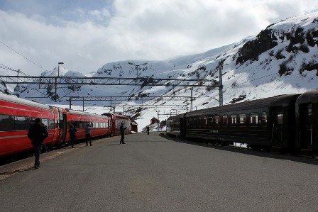 Out two trains at Myrdal Station